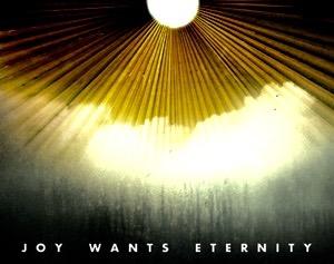 joy_wants_eternity-you_who_pretend_to_sleep