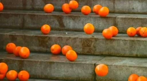 oranges-tanaka