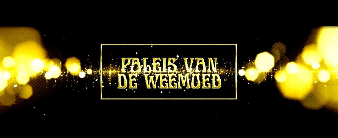 Paleis-van-de-Weemoed-Mackrad.nl-Multimediale-oplossingen